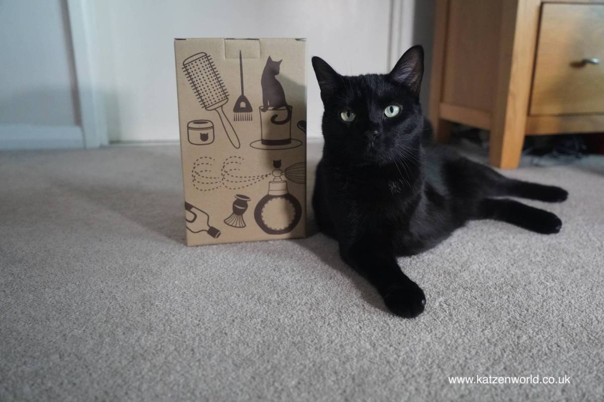 Oliver & Nubia: Oh what will be in this box!